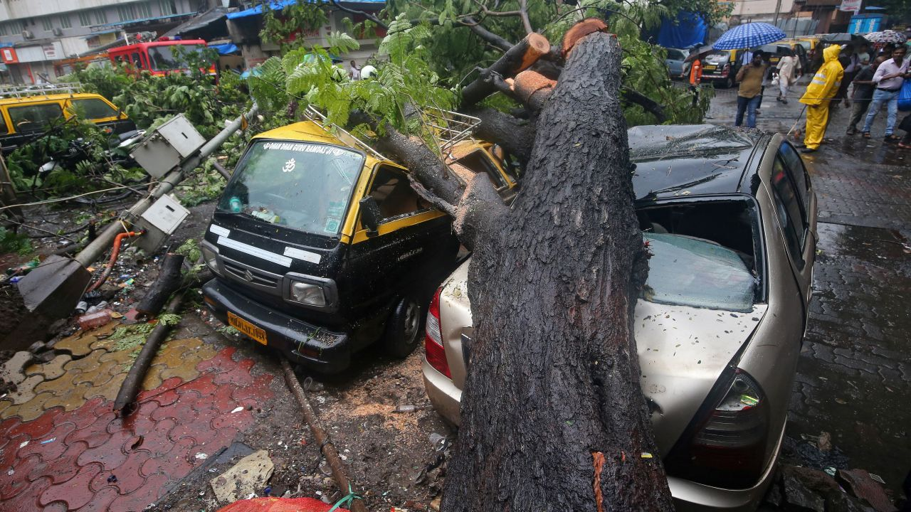 People stand next to cars damaged by a fallen tree after heavy rain in Mumbai. (Image: Reuters)