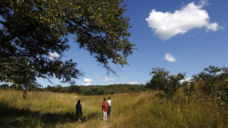 Members of a home-based care team walk to a farm owned by an HIV-positive client outside the village of Munyona, close to the town of Chikuni in the south of Zambia April 18, 2012. The caregivers on the Jesuit-run home-based care team at Chikuni run a capacity building and empowerment project at household level, offering training and assistance in crop-growing and animal rearing, as well as offering companionship, pastoral care and monitoring antiretroviral treatment compliance of HIV-AIDS patients. Picture taken April 18, 2012. REUTERS/Darrin Zammit Lupi (ZAMBIA - Tags: ENVIRONMENT DRUGS SOCIETY HEALTH AGRICULTURE) MALTA OUT. NO COMMERCIAL OR EDITORIAL SALES IN MALTA - GM1E84L0CT801