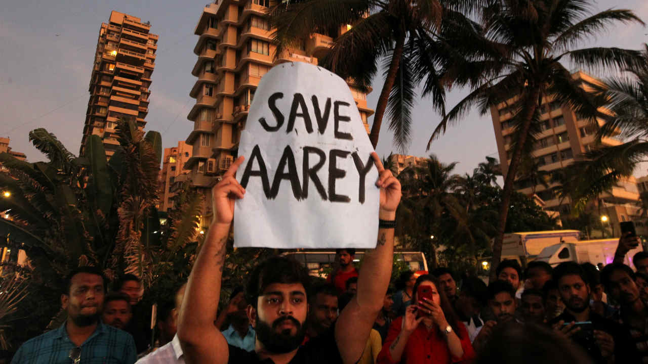 In space-starved and congested Mumbai, the Sanjay Gandhi National Park and Aarey are some of the few green spaces that work as the lungs of the city. The rich biodiversity, of Aarey provides a home to several animals, birds and with lakhs of trees. (Image: Reuters)