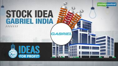 Ideas for Profit | Don't miss this fundamentally strong auto ancillary company