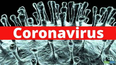 The impact of the coronavirus epidemic in China on India's chemical industry (Part -1)